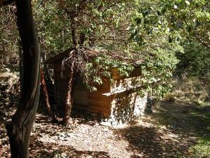 llyndorah cabin